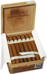 kiste_rauchgelegenheit